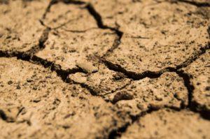 Verdorrter, trockener Boden
